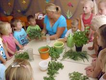 Kräuterkunde mit Kindern
